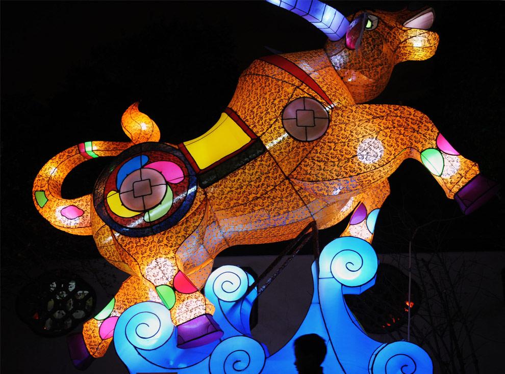 china-lantern-festival-17