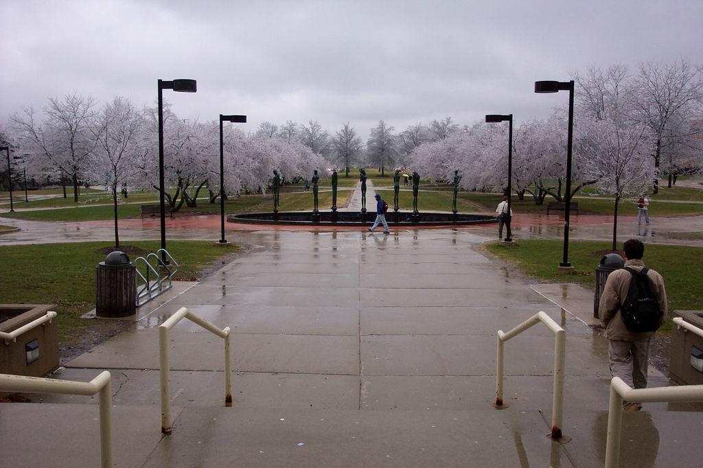 Замерзшие вишни
