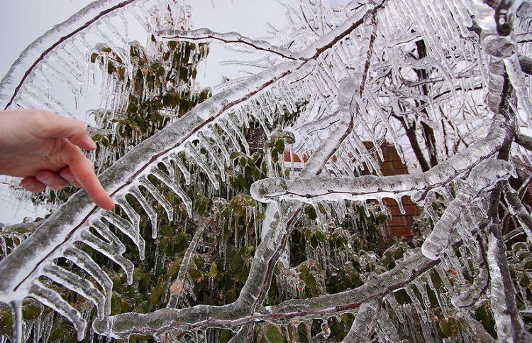 ice-storm-arkansas-04