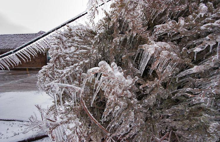 ice-storm-arkansas-05
