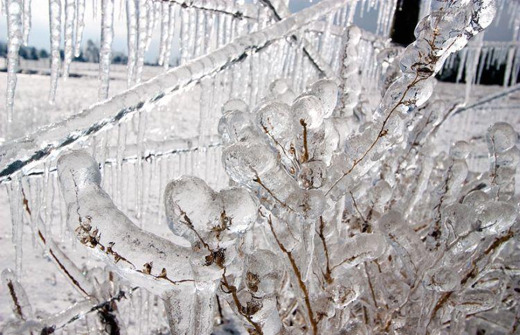 ice-storm-arkansas-07