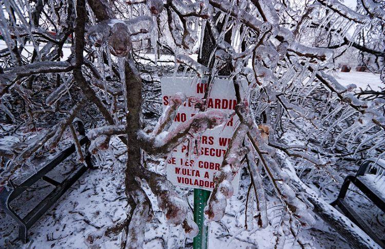 ice-storm-arkansas-11