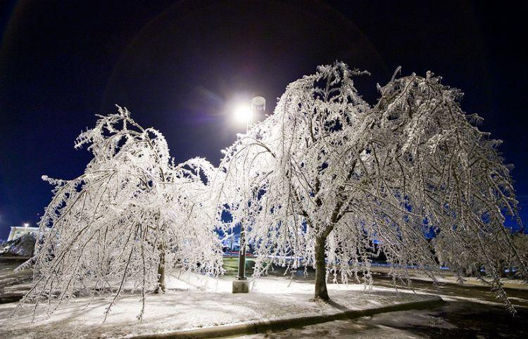 ice-storm-arkansas-18