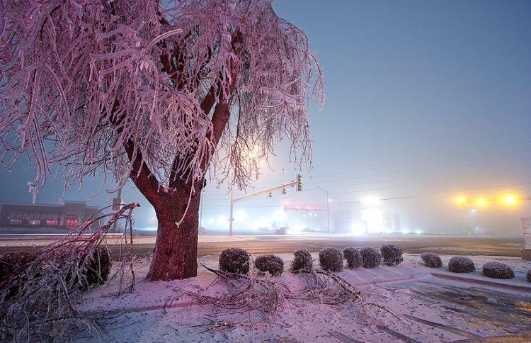 ice-storm-arkansas-28