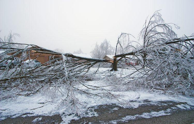 ice-storm-arkansas-36