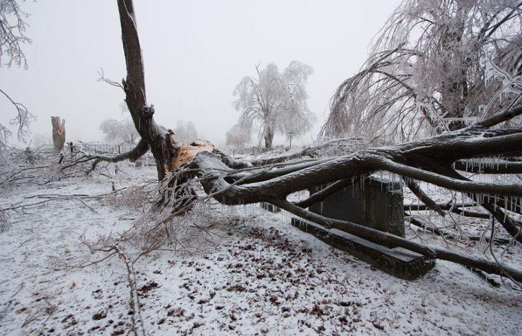 ice-storm-arkansas-39