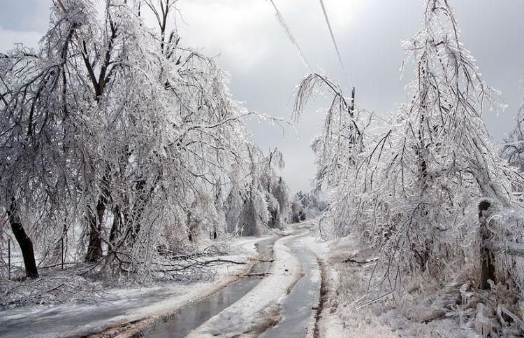 ice-storm-arkansas-43