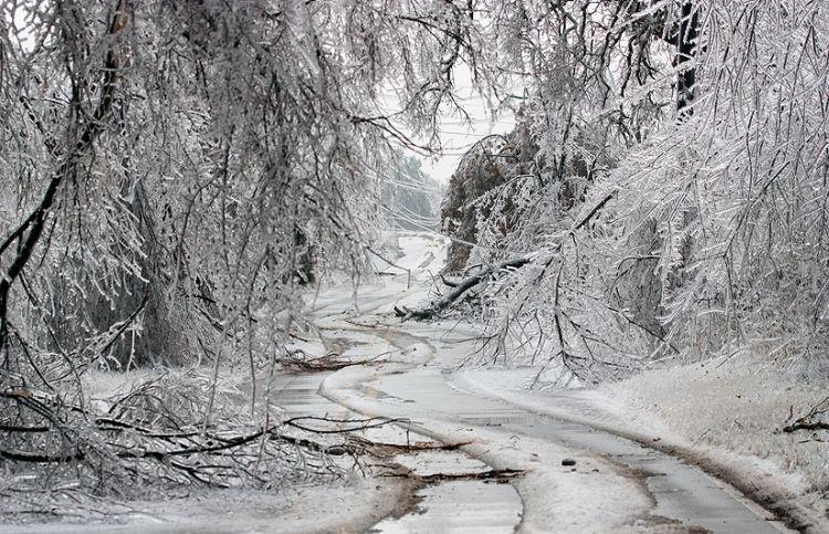 ice-storm-arkansas-44