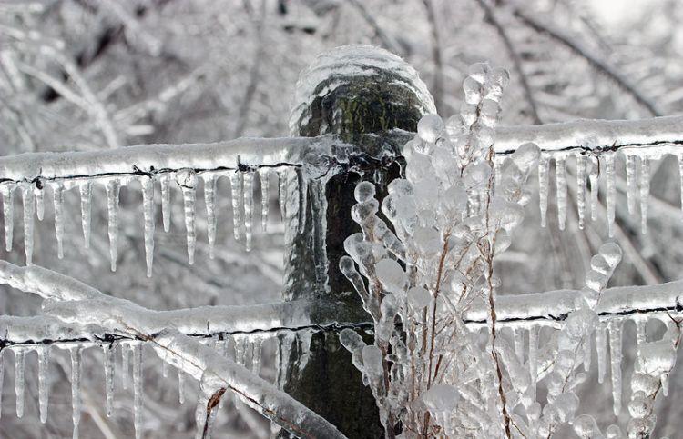 ice-storm-arkansas-46