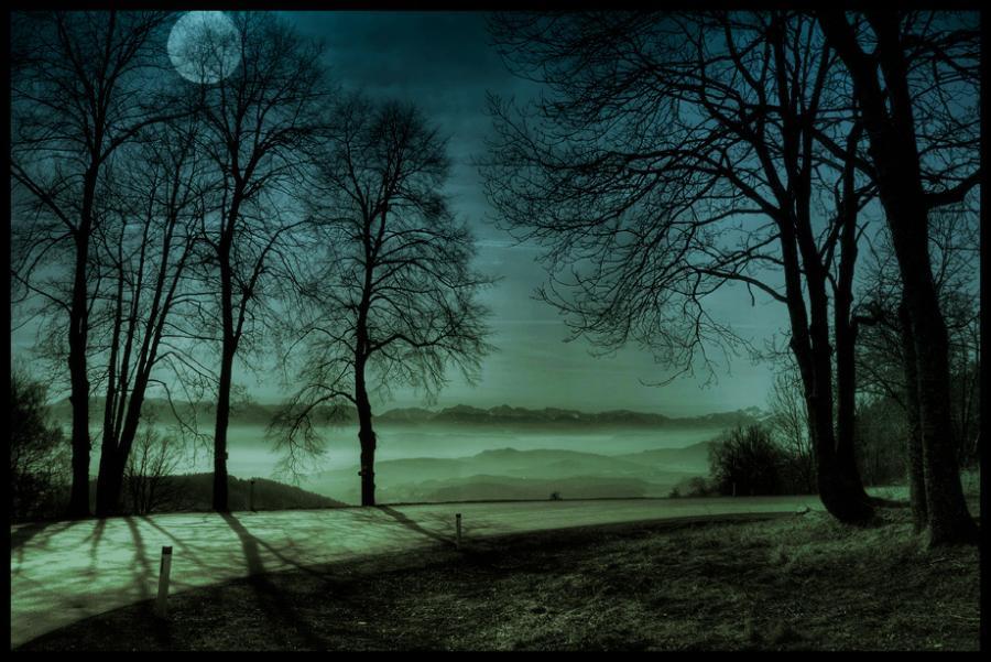 prikolnie-foto-130209-71