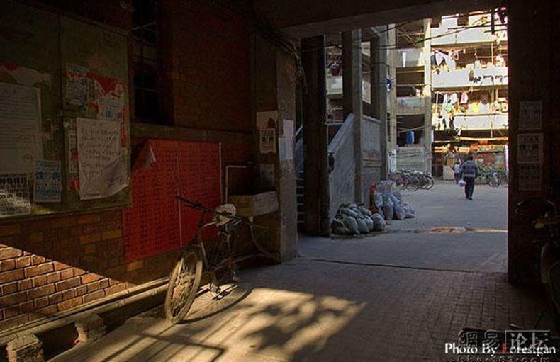 shanghai-yard-16