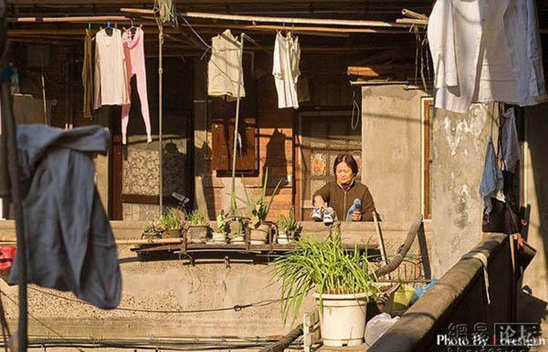 shanghai-yard-17