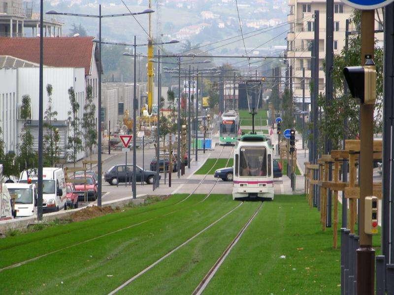 tram-on-grass-02