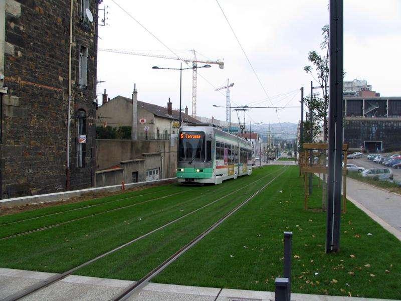 tram-on-grass-03
