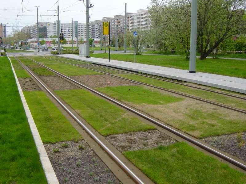 tram-on-grass-08