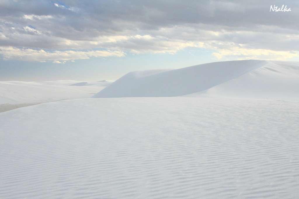 white-sands-04