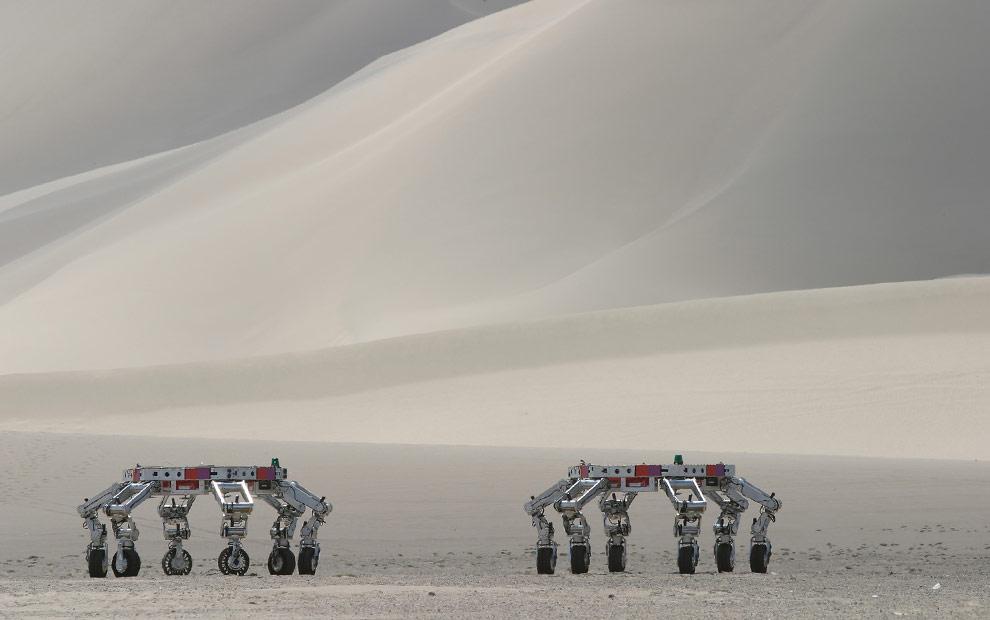 robots-10