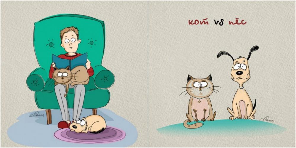 Отличия котов от собак в смешных иллюстрациях