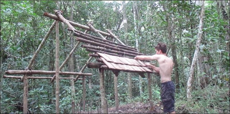 строительство дома в лесу