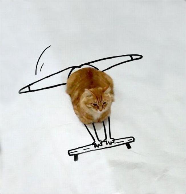 Дорисуй кота! (17 фото)