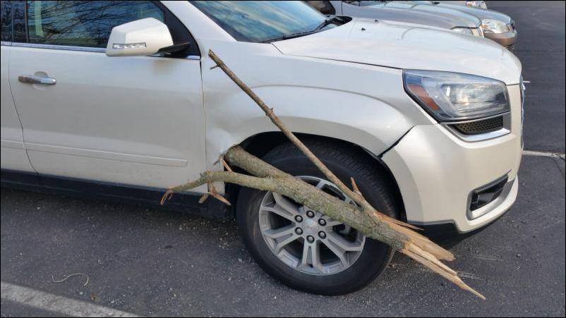 Ветка пробила автомобиль (3 фото)