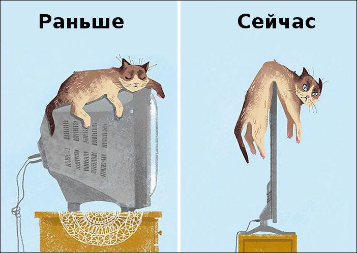 Как технологии изменили жизнь котов (15 картинок)