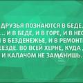 atkritka-02072016-006