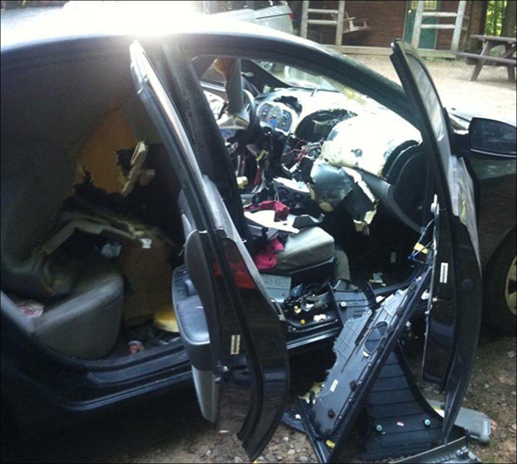 bear-car-001