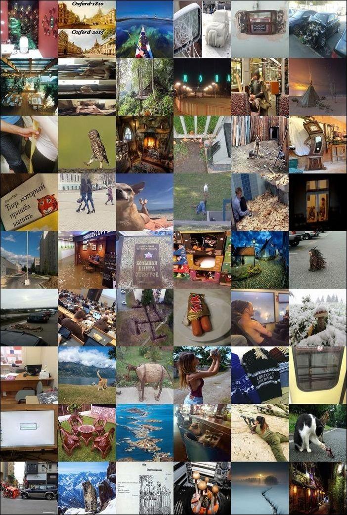 fotoprikoly-28102016-000