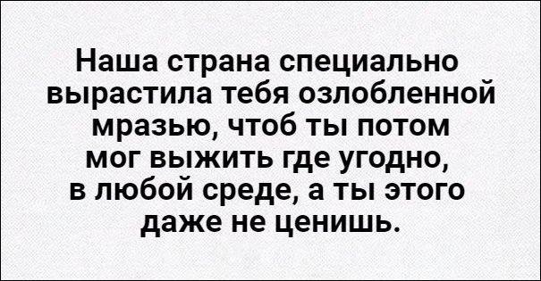 atkritka-12112016-002