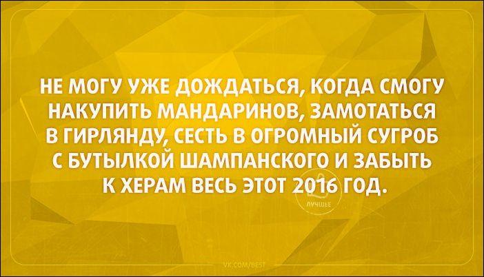 atkritka-36112016-010