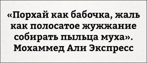 atkritka-36112016-013