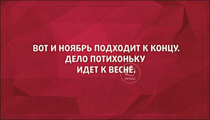 atkritka-36112016-014