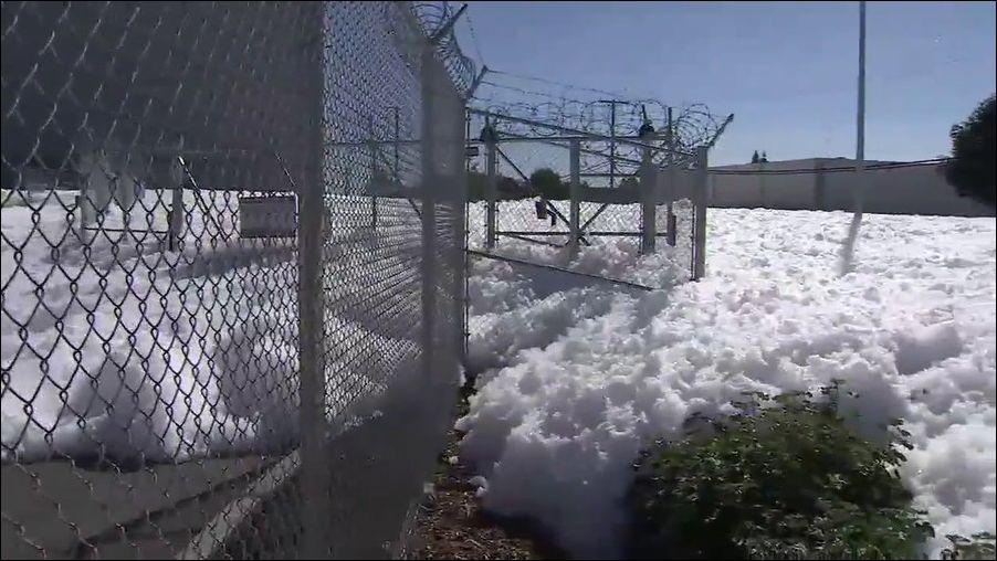 foam-santaclara-006