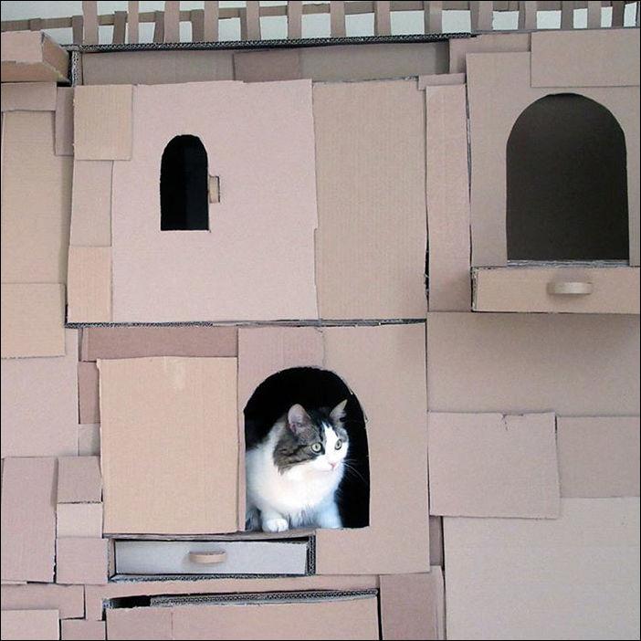 cat-castle-003