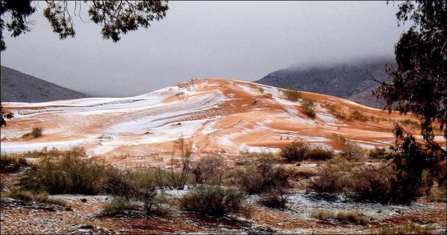 sahara-snow-006