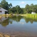 pond-construction-024